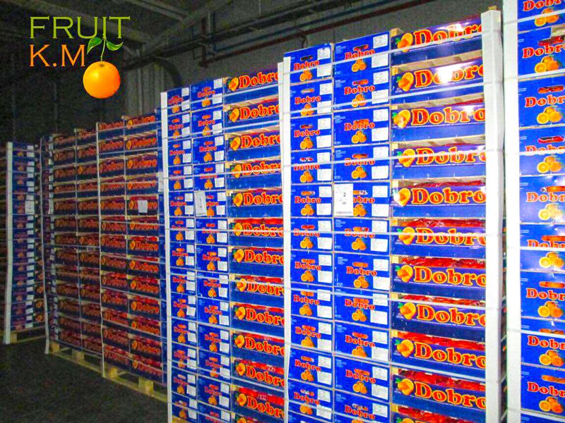 km-fruits-usine3